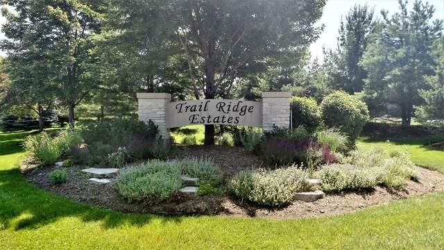 Lot 17 Trail Ridge Drive, St. Charles, IL 60175 (MLS #10743390) :: Lewke Partners