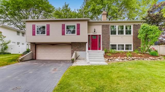 8028 Leawood Lane, Woodridge, IL 60517 (MLS #10744289) :: John Lyons Real Estate