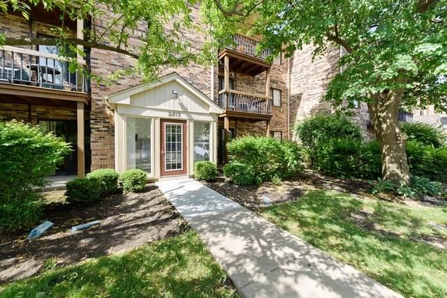 2213 Nichols Road 22E, Arlington Heights, IL 60004 (MLS #10744429) :: John Lyons Real Estate