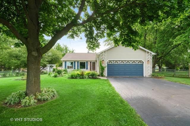 97 Leisure Lane, Oswego, IL 60543 (MLS #10744436) :: Helen Oliveri Real Estate