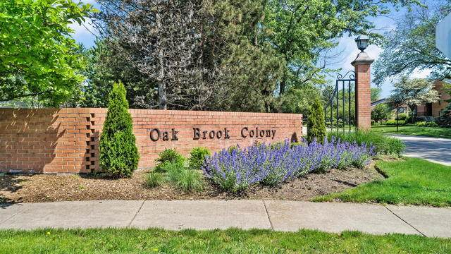 19w253 Ginger Brook Drive, Oak Brook, IL 60523 (MLS #10745422) :: The Wexler Group at Keller Williams Preferred Realty