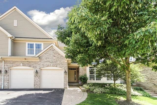 713 Stone Canyon Circle, Inverness, IL 60010 (MLS #10745602) :: John Lyons Real Estate