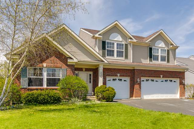 236 Cross Creek Lane, Lindenhurst, IL 60046 (MLS #10745856) :: Property Consultants Realty