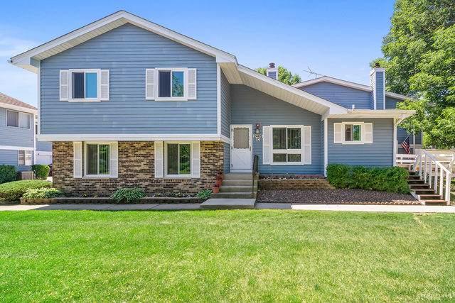 2405 Brunswick Circle B, Woodridge, IL 60517 (MLS #10746306) :: Property Consultants Realty