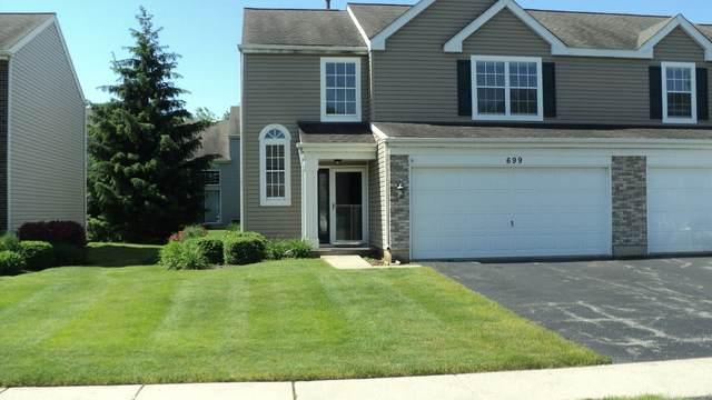 699 Savannah Lane, Crystal Lake, IL 60014 (MLS #10746410) :: Property Consultants Realty