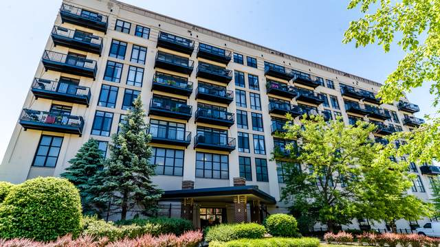 1524 S Sangamon Street #714, Chicago, IL 60608 (MLS #10746576) :: Property Consultants Realty