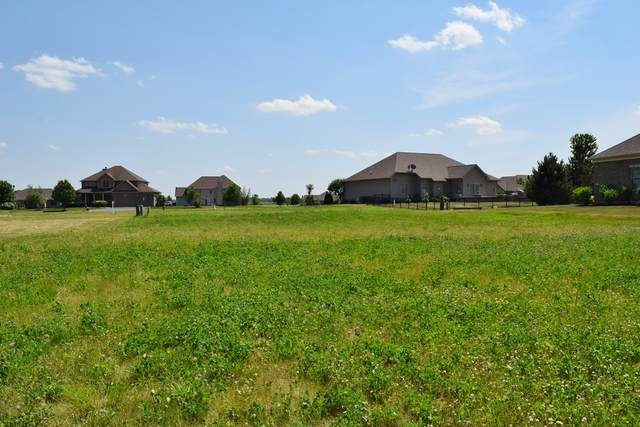 476 Quinlan Avenue, Dekalb, IL 60115 (MLS #10746617) :: John Lyons Real Estate