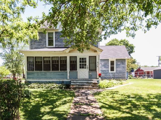 315 N Second Street, Peotone, IL 60468 (MLS #10746825) :: Property Consultants Realty