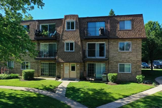 9420 Bay Colony Drive 1E, Des Plaines, IL 60016 (MLS #10747728) :: John Lyons Real Estate