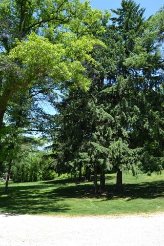 Lot 1 Foster Road, Huntley, IL 60142 (MLS #10747811) :: Property Consultants Realty