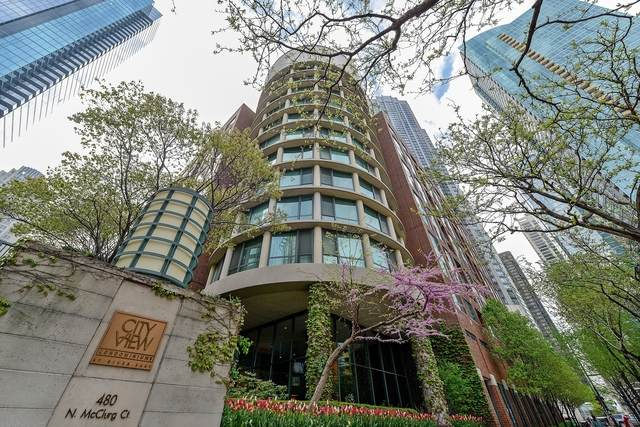 480 N Mcclurg Court #609, Chicago, IL 60611 (MLS #10748979) :: Property Consultants Realty