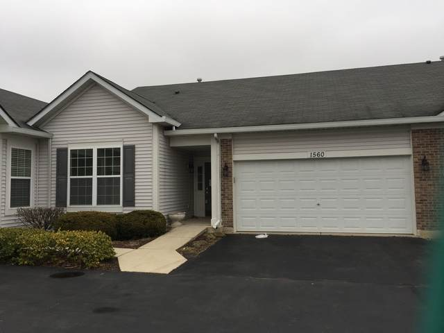 1560 W Ludington Circle, Romeoville, IL 60446 (MLS #10749118) :: Lewke Partners