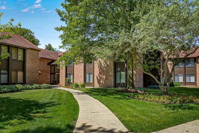 740 Saint Andrews Lane #36, Crystal Lake, IL 60014 (MLS #10749710) :: Property Consultants Realty