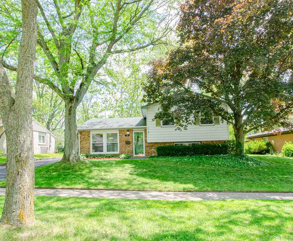 731 Blackhawk Drive, University Park, IL 60466 (MLS #10749989) :: Property Consultants Realty