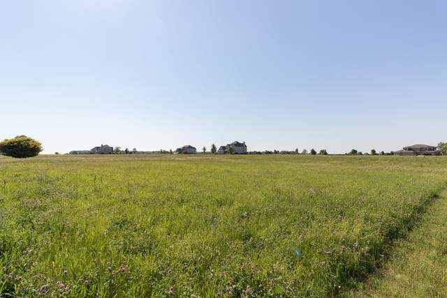 5725 Whitetail Ridge Drive - Photo 1