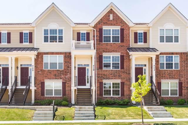 719 Hickory Street, Mundelein, IL 60060 (MLS #10753210) :: Knott's Real Estate Team