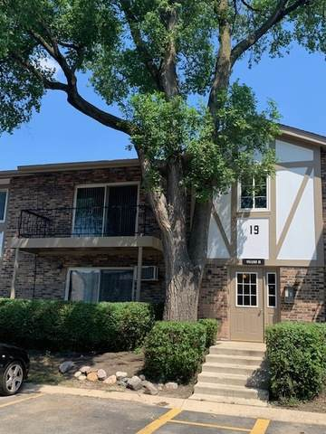 9S180 Lake Drive 19-208, Willowbrook, IL 60527 (MLS #10753368) :: Property Consultants Realty