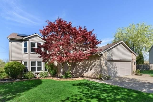 75 Fabish Court, Buffalo Grove, IL 60089 (MLS #10753582) :: Property Consultants Realty