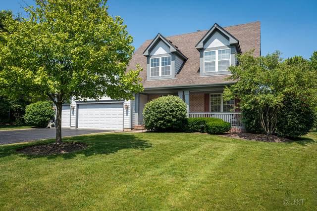 14 Dorchester Court, Hawthorn Woods, IL 60047 (MLS #10753593) :: Helen Oliveri Real Estate