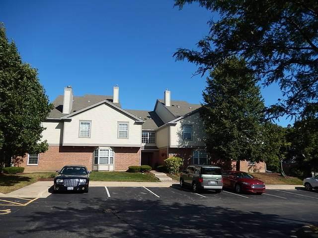123 Willow Brook Court #2, Schaumburg, IL 60195 (MLS #10753675) :: Angela Walker Homes Real Estate Group