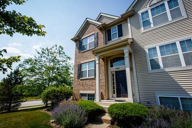 568 Richard Brown Boulevard, Volo, IL 60073 (MLS #10753782) :: Property Consultants Realty
