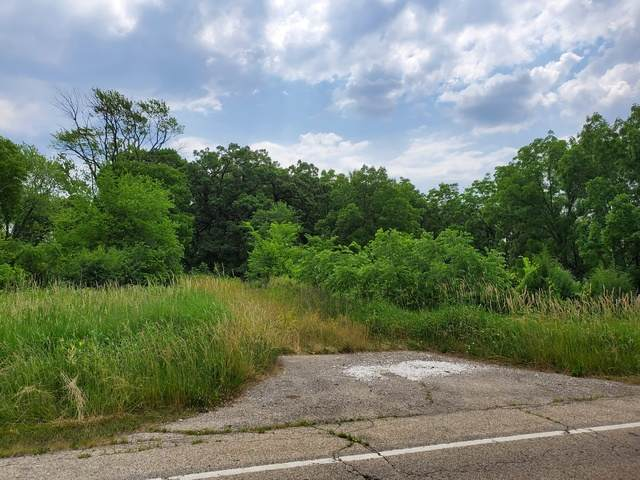 1999 N Fuller Road, Gurnee, IL 60031 (MLS #10754589) :: Property Consultants Realty