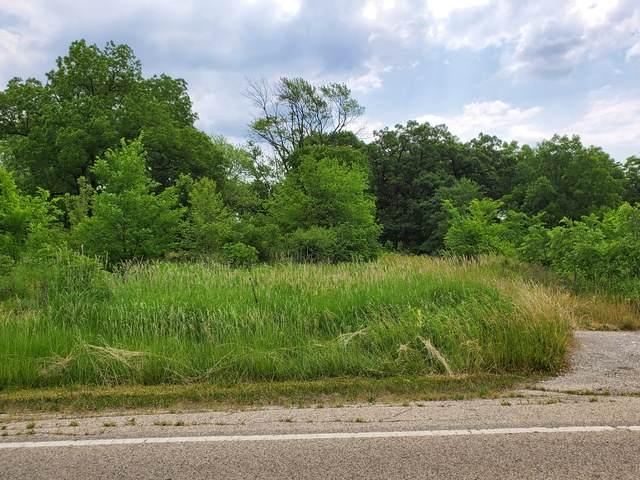 Lot 10 Minchillo Court, Gurnee, IL 60031 (MLS #10754637) :: Property Consultants Realty
