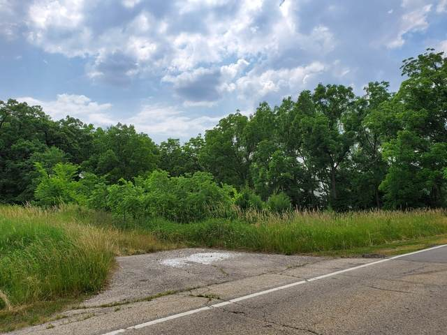 Lot 1 Minchillo Court, Gurnee, IL 60031 (MLS #10754653) :: Property Consultants Realty