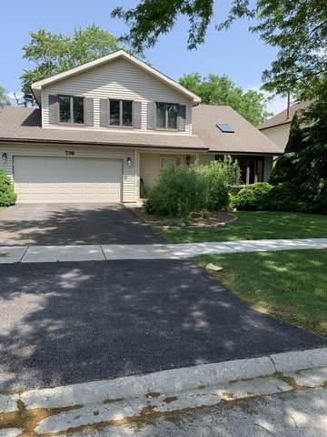 738 Kristy Lane, Wheeling, IL 60090 (MLS #10754662) :: Property Consultants Realty