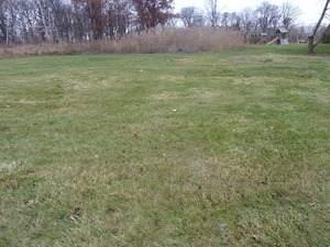 16430 118th Place, Orland Park, IL 60467 (MLS #10755649) :: John Lyons Real Estate