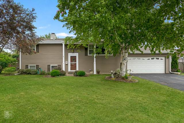 457 Mary Lane, Crystal Lake, IL 60014 (MLS #10755881) :: Littlefield Group