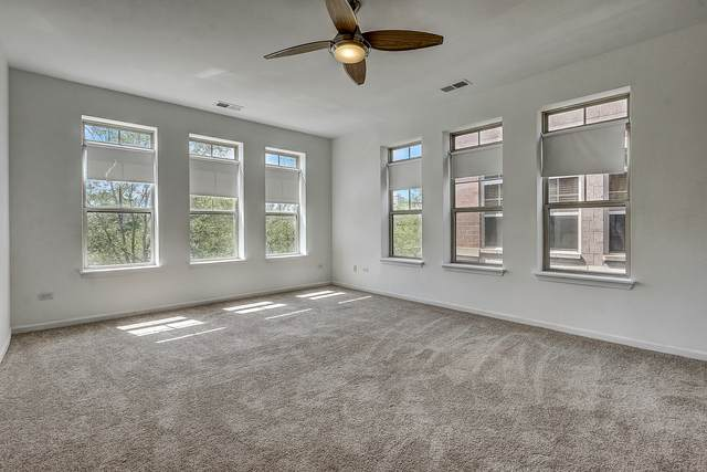 3815 S Langley Avenue #301, Chicago, IL 60653 (MLS #10756351) :: Property Consultants Realty