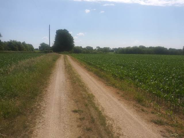 TBD N Tower Rd At Us Highway 20 Road, Freeport, IL 61032 (MLS #10756886) :: Property Consultants Realty