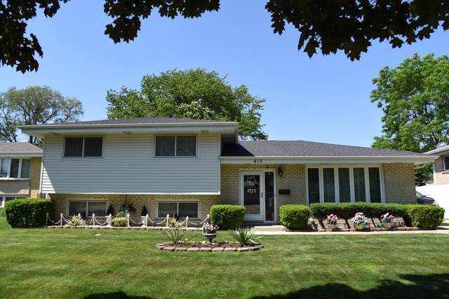 615 Arlene Drive, Wood Dale, IL 60191 (MLS #10756979) :: Property Consultants Realty