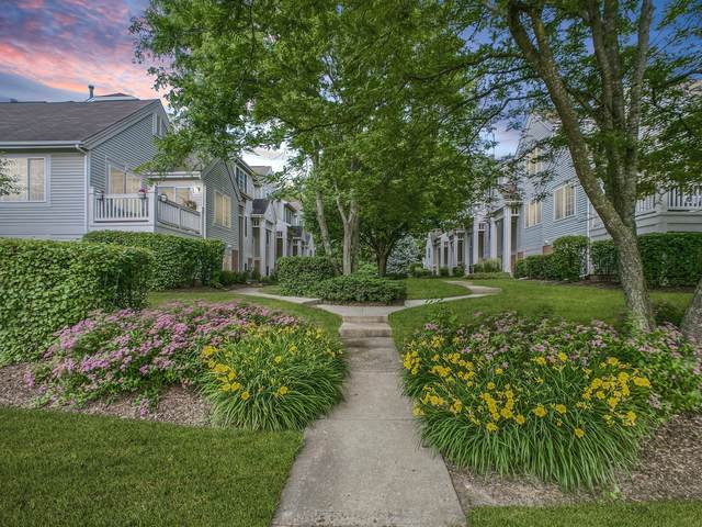 256 New Haven Drive, Cary, IL 60013 (MLS #10756986) :: Property Consultants Realty