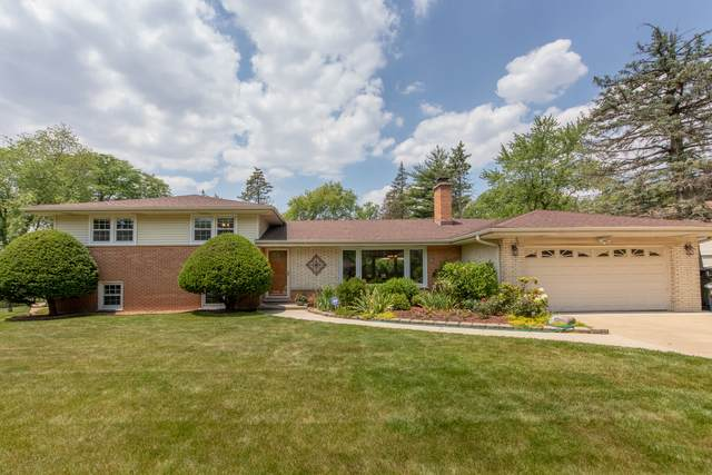 4 W Leon Lane, Prospect Heights, IL 60070 (MLS #10757062) :: Property Consultants Realty