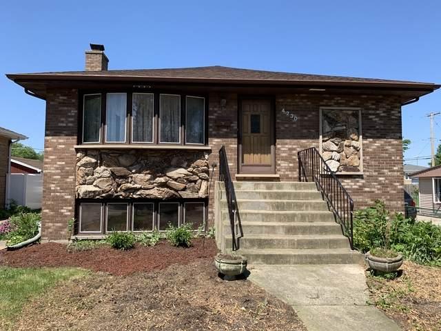 4230 Judd Avenue, Schiller Park, IL 60176 (MLS #10757704) :: Property Consultants Realty