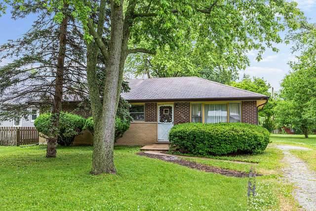 21929 Millard Avenue, Richton Park, IL 60471 (MLS #10757964) :: Property Consultants Realty
