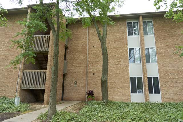 6008 E Lake Drive 1B, Lisle, IL 60532 (MLS #10757976) :: Property Consultants Realty