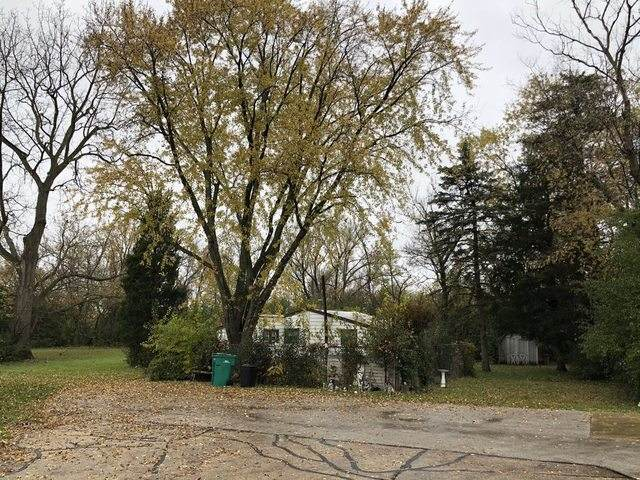 362 N 11th Street, Wheeling, IL 60090 (MLS #10758464) :: Property Consultants Realty