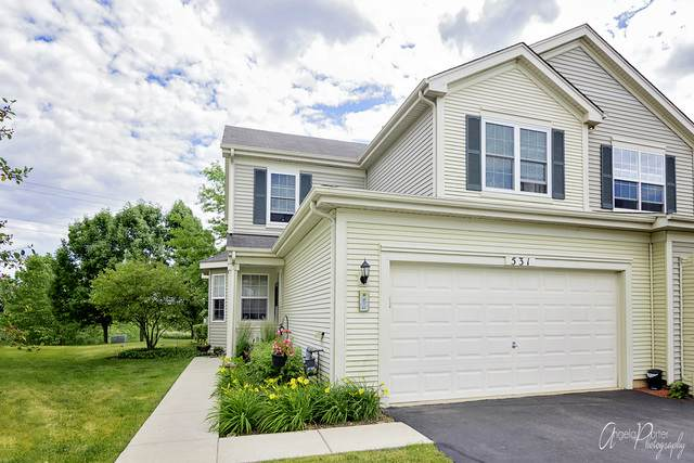 531 W Kristina Lane, Round Lake, IL 60073 (MLS #10758677) :: Property Consultants Realty