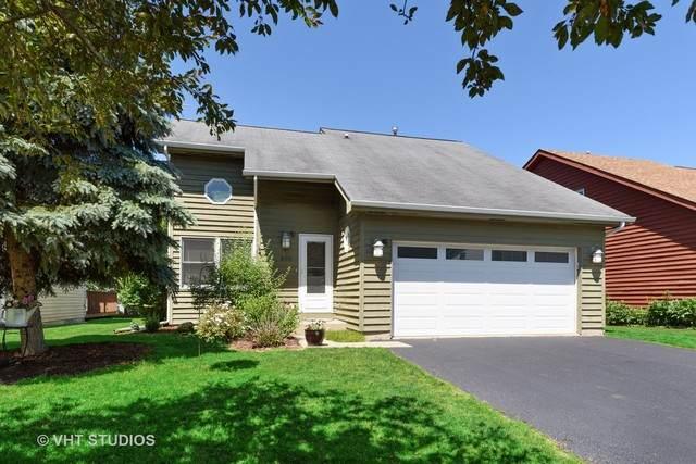 805 Summit Avenue, Wauconda, IL 60084 (MLS #10759225) :: Helen Oliveri Real Estate