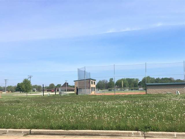 102 Karen Drive, Dwight, IL 60420 (MLS #10759527) :: Helen Oliveri Real Estate