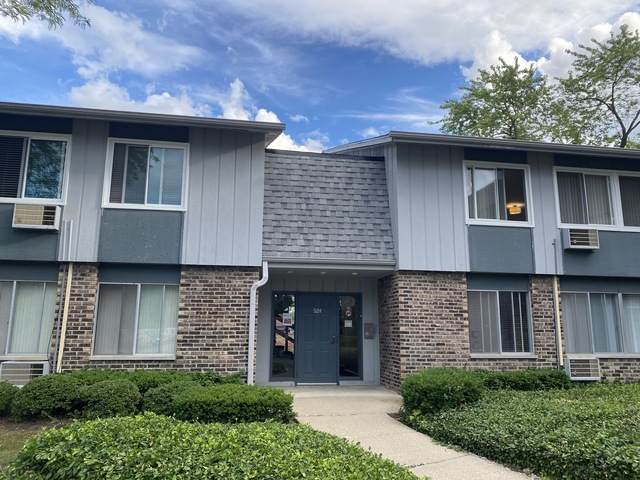 924 E Old Willow Road #204, Prospect Heights, IL 60070 (MLS #10759645) :: Knott's Real Estate Team