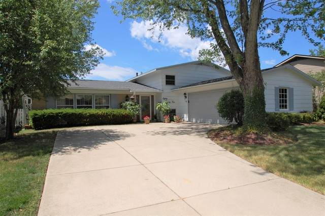 8024 Northway Drive, Hanover Park, IL 60133 (MLS #10760372) :: Ani Real Estate