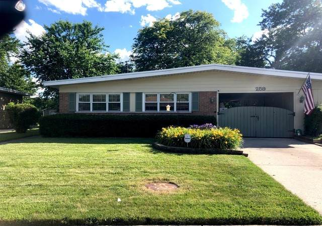 259 Sangamon Street, Park Forest, IL 60466 (MLS #10760407) :: Property Consultants Realty