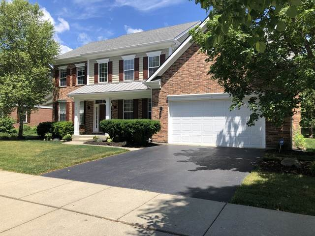 318 Baltimore Drive, Vernon Hills, IL 60061 (MLS #10760495) :: Property Consultants Realty
