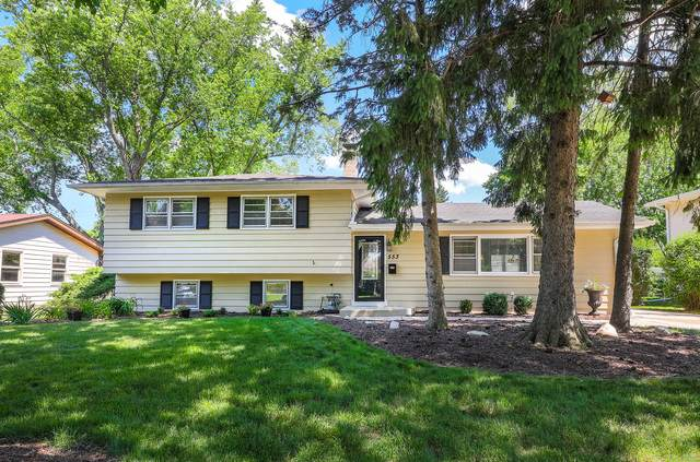 553 Spruce Drive, Naperville, IL 60540 (MLS #10760638) :: Property Consultants Realty