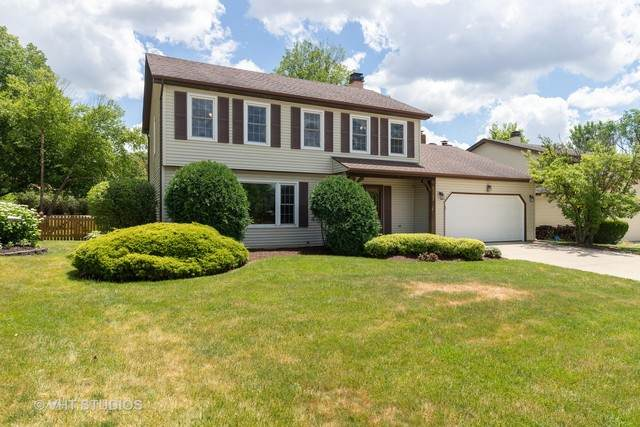 8325 Frost Court, Woodridge, IL 60517 (MLS #10761027) :: Property Consultants Realty