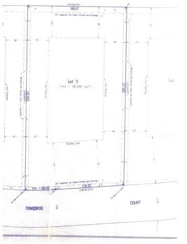 22188 W Concorde Court, Kildeer, IL 60047 (MLS #10761118) :: Helen Oliveri Real Estate
